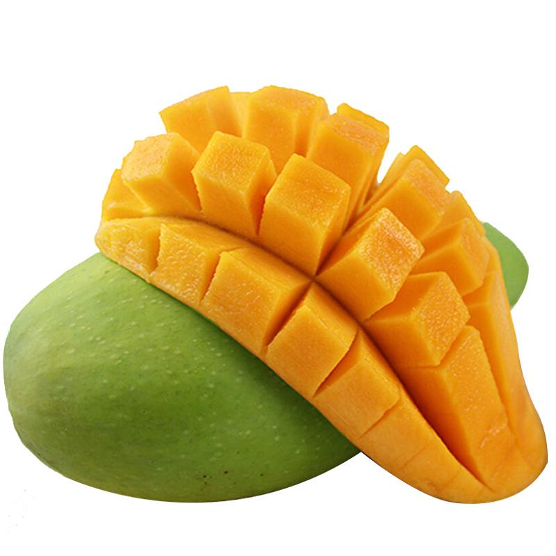 大青芒果 9斤新鲜水果康源
