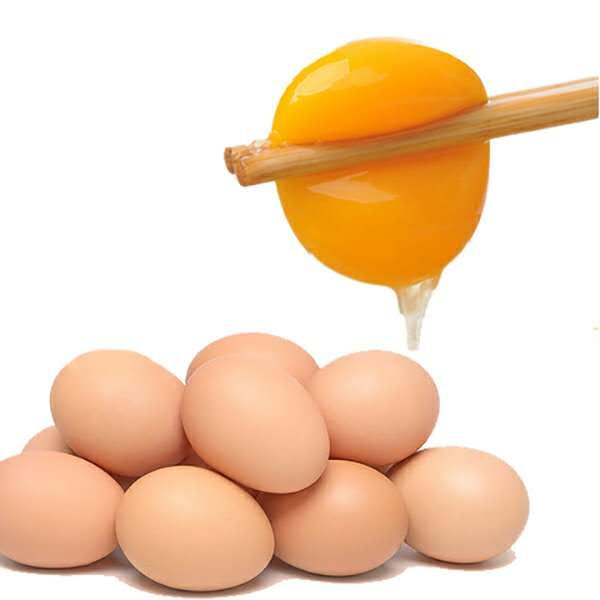 新鲜土鸡蛋  农家散养草鸡蛋 20枚 破损包赔