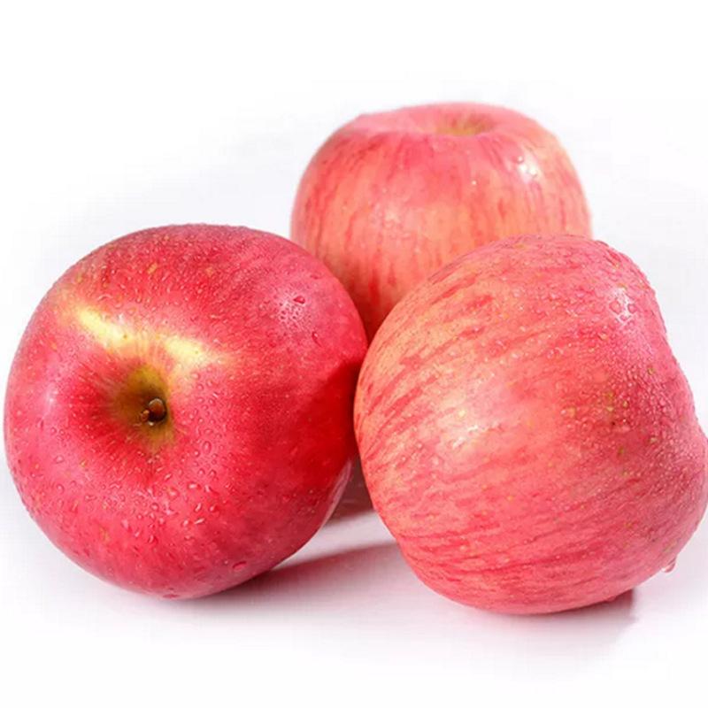 新鲜水果 苹果 膜袋红富士苹果75-85mm毛重10斤(14-18个)