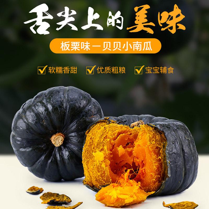 日本品种贝贝小南瓜5斤包邮  香粉糯甜 宝宝辅食  山东产地现摘现发