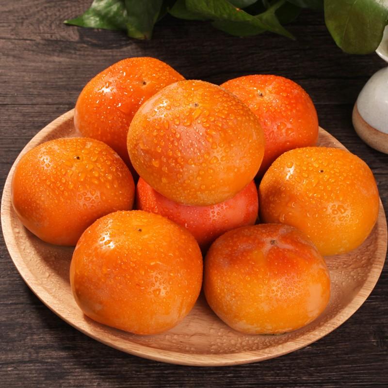 新鲜脆柿子脆甜硬柿水果柿子甜柿子5斤装包邮