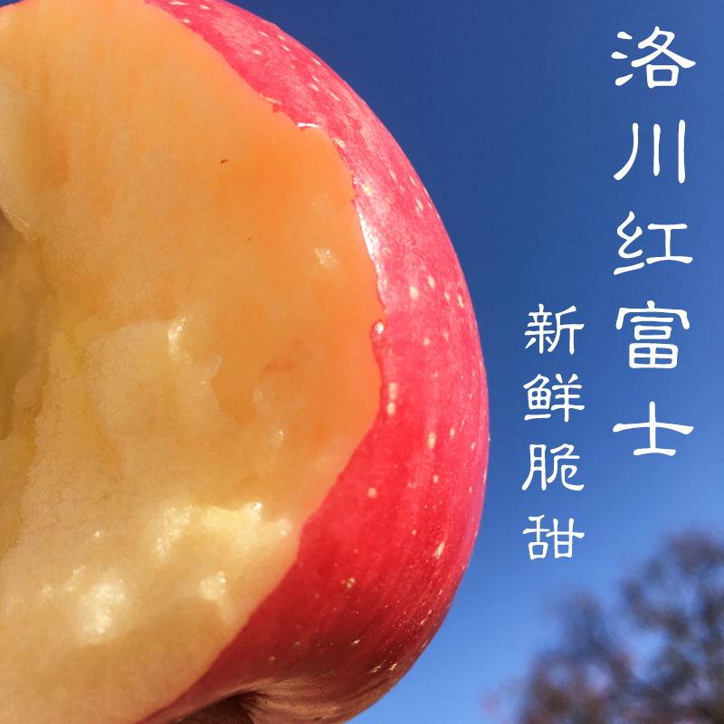 陕西洛川红富士苹果 脆甜爽口 甜度高 5斤12个