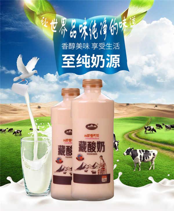 青海湖 炭烧酸奶1KG 牦牛藏酸奶 青藏高原地方风味酵牛奶   冷藏低温奶 保鲜发货【京东冷链发全国】