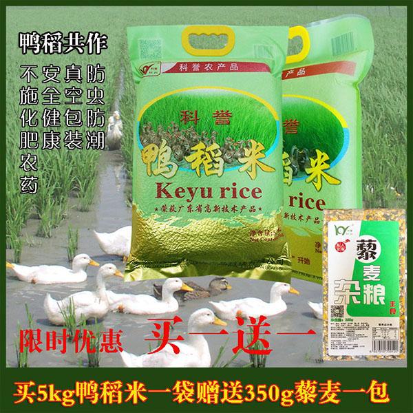 科誉鸭稻丝苗米大米5kg10斤增城有机种植长粒香口感好送赠品