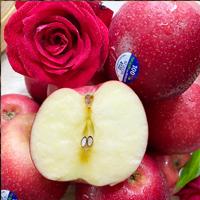 新西兰进口玫瑰苹果 皇后红玫瑰新鲜皇后queen苹果 脆甜多汁红苹果 12个装
