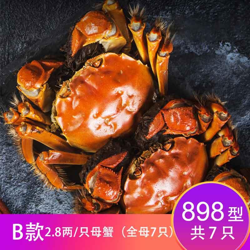 【卡劵】故味食集阳澄湖大闸蟹898型   B款2.8两/只   全母7只